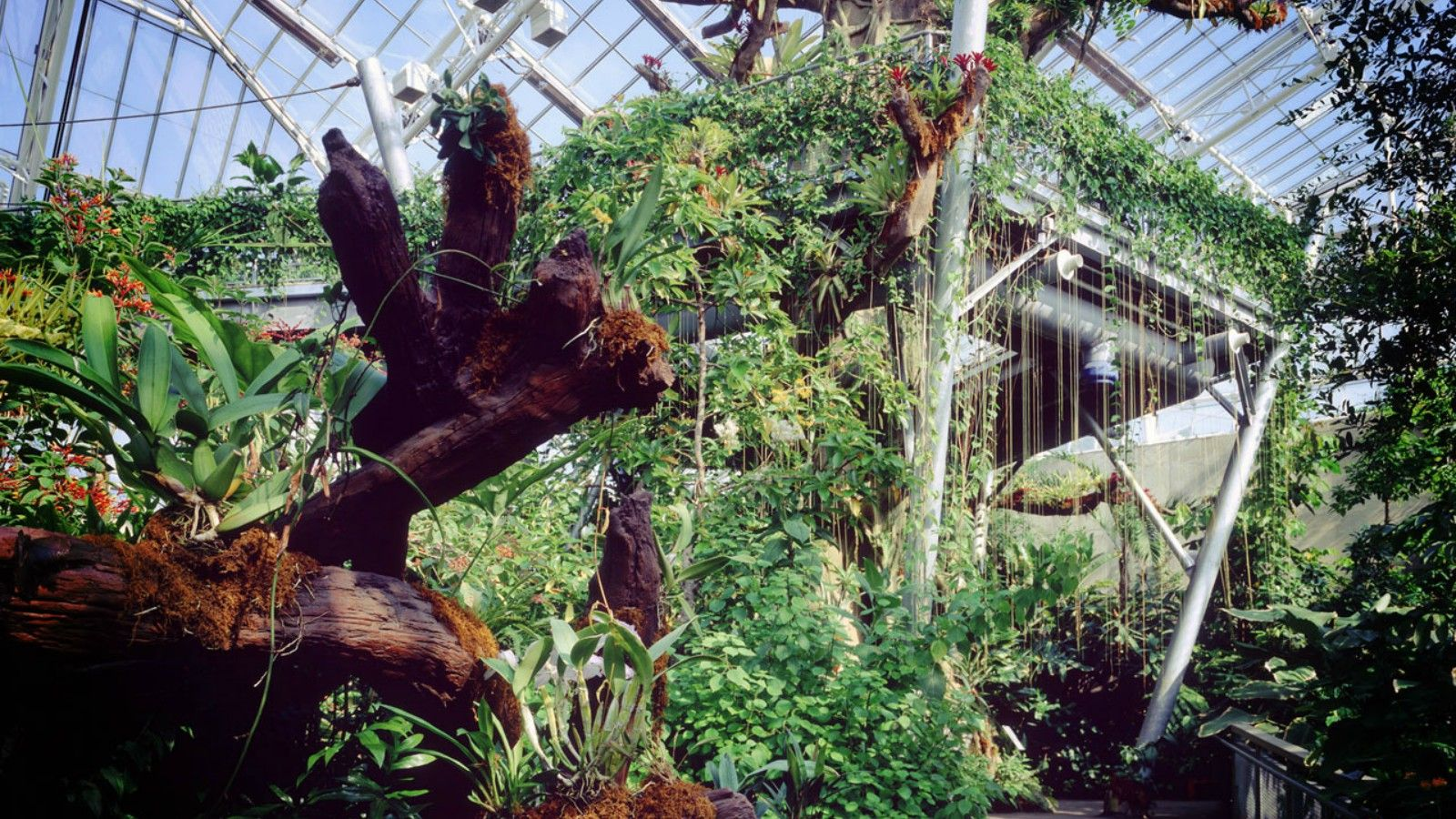 Things to do in Cleveland - Cleveland Botanical Garden
